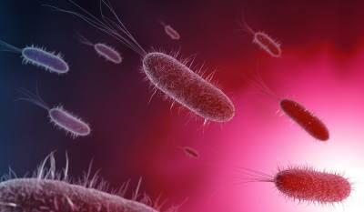 Какво е биофилм? Къде се формира?
